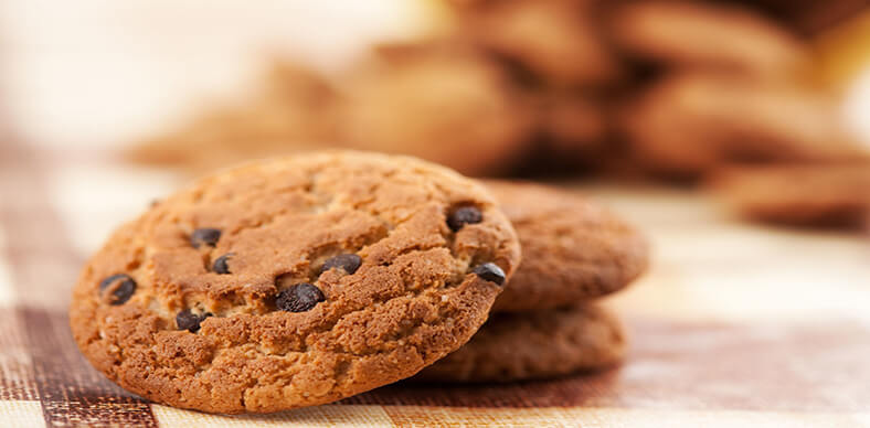 Cookie isca para tolos: Mr. Cheney